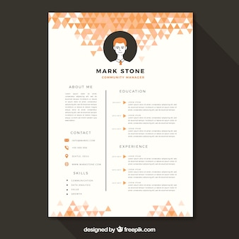 Colorful curriculum template with geometric design