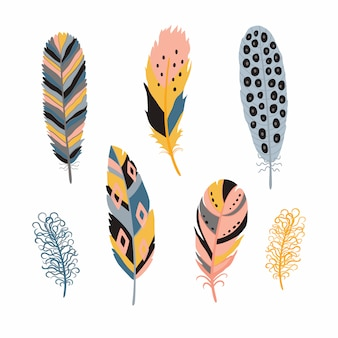 Colorful detailed bird feathers set