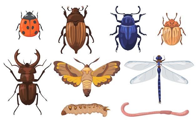 Плоский набор красочных различных насекомых, червей и ошибок