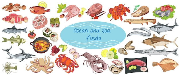 Colorful drawing marine food collection