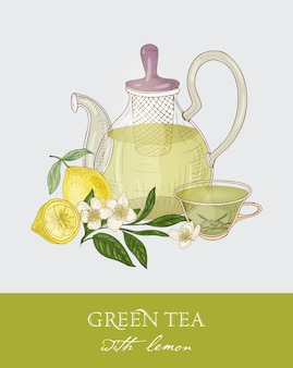 Colorful drawing of teapot with strainer, transparent cup full of green tea, fresh leaves and flowers on gray