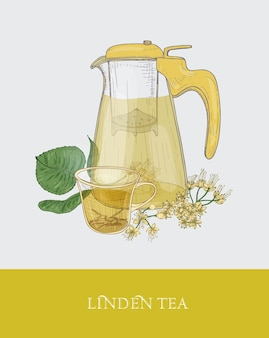 Colorful drawing of transparent pitcher with strainer, cup of floral tea or herbal infusion