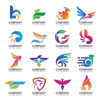 Colorful eagle logo design collection