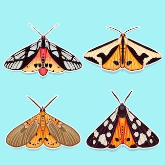 カラフルなエキゾチックな蛾の昆虫学コレクション