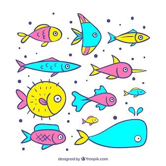 Stile disegnato di raccolta di pesci colorati a disposizione