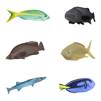 Colorful fishes collection