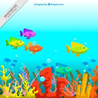 海をバックグラウンドでカラフルな魚