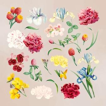 베이지 색 바탕에 화려한 꽃 세트
