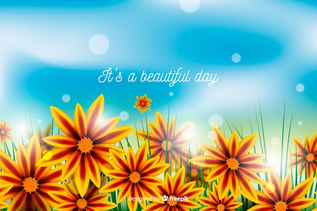 Colorful flowers background with inspirational quote