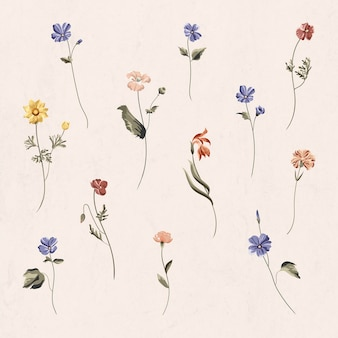 Colorful flowers on a beige background vector