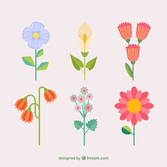 Colorful flowers collection with stem in flat style