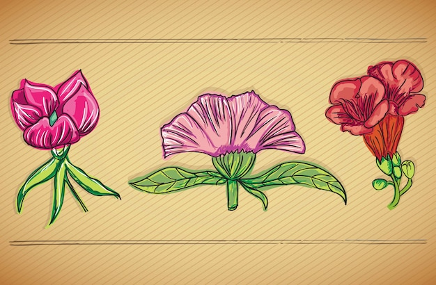 Colorful flowers icons set on vintage background