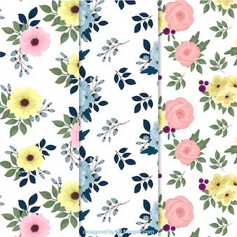 Raccolta di modelli di fiori colorati
