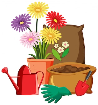 Colorful flowers with gardening tools on white background