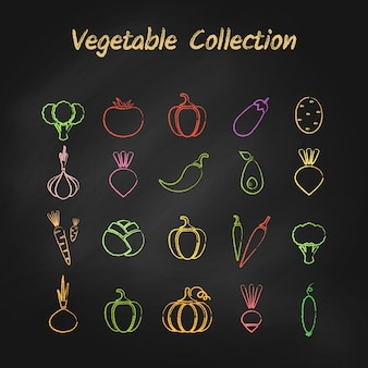 Colorful grunge contour vegetable icon set