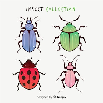 Colorful hand drawn beetles pack