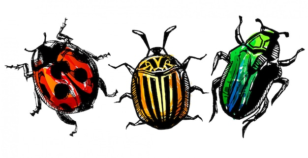 Colorful hand drawn bugs with watercolor effect shaded.