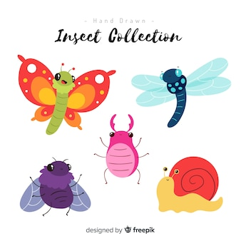Colorful hand drawn insect collection