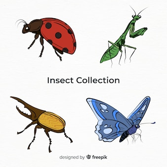 Красочная коллекция рисованной насекомых