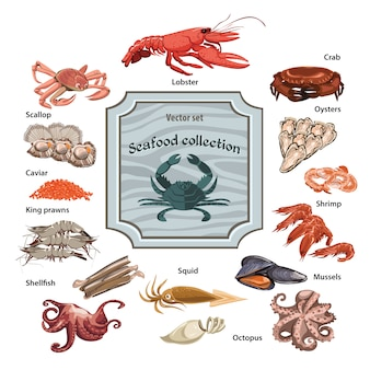 Colorful hand drawn seafood icons set
