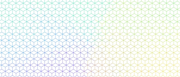 Colorful hexagonal line wide pattern design banner