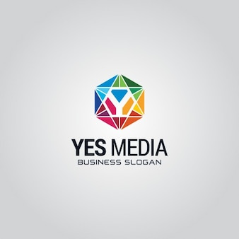 Colorful hexagonal logo with the letter y