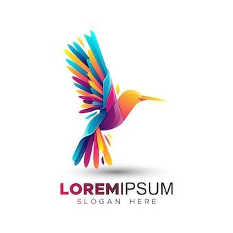 Colorful hummingbird logo template