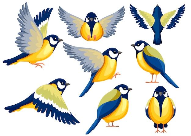 シジュウカラ鳥のカラフルなアイコンセット。キャラクター 。ビューの別の側面にある鳥のアイコン。かわいいシジュウカラでもテンプレート。白い背景のイラスト。