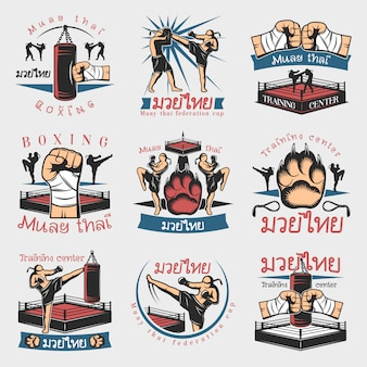 Colorful kickboxing emblems set