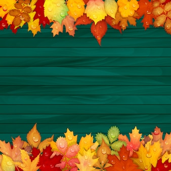 Colorful leaves on wooden background
