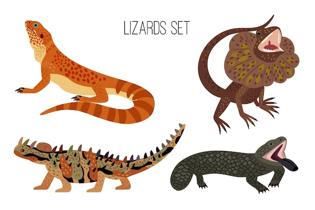 カラフルなトカゲ。尾を持つ漫画の這うオーストラリアの爬虫類、動物園のエキゾチックな動物、白い背景で隔離の古代トカゲのベクトルイラストセット