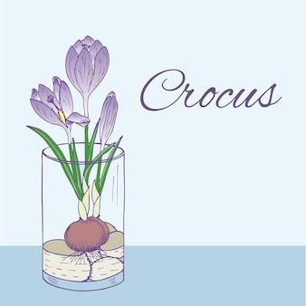 手描きスタイルのガラスに咲くクロッカスの花とカラフルな自然の花のイラスト