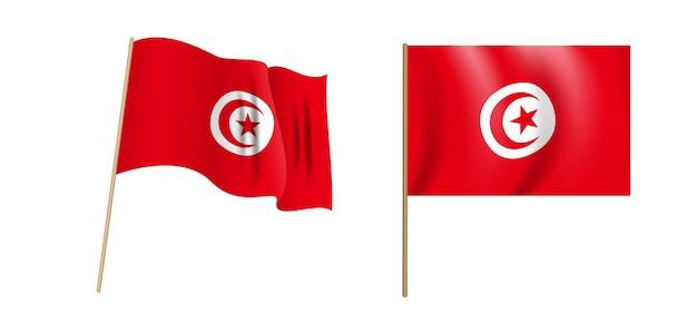 カラフルな自然主義的なチュニジア共和国が旗を振っています。