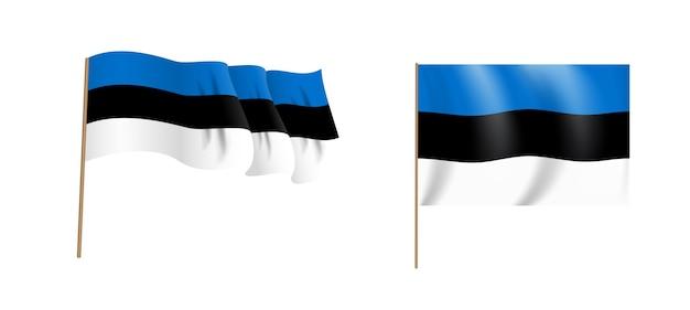 国エストニアのカラフルな自然主義的な手を振る旗。