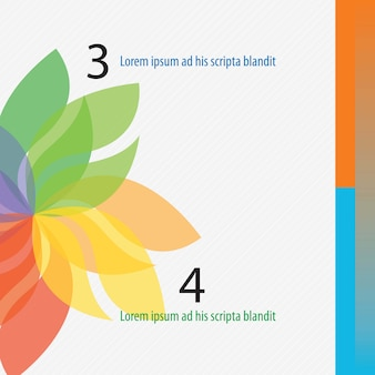 Colorful numbers brochure with flower numbers stepsvector illustration