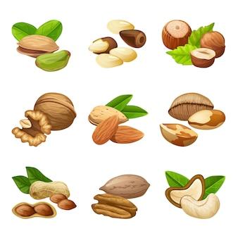 Коллекция красочных орехов