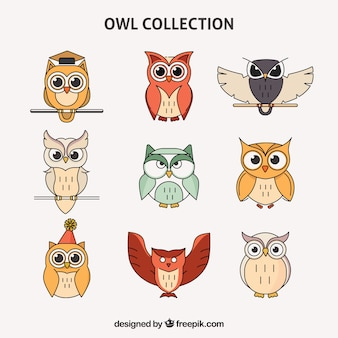 Colorful outline owl set of nine