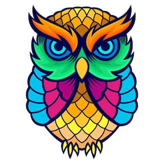 Colorful owl artwork kid tees