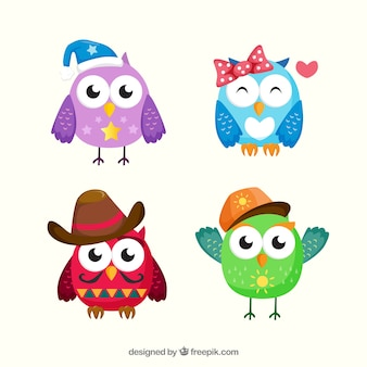 Colorful owl collection