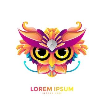 Красочный шаблон логотипа сова