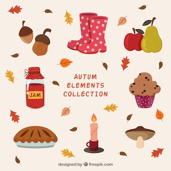 Colorful pack of autumnal elements