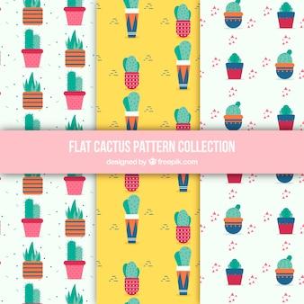 Pacchetto colorato di modelli cactus piatti