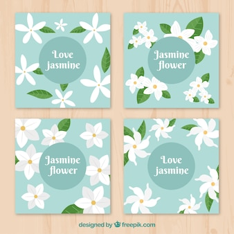 Colorful pack of jasmine cards