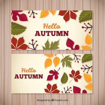 Colorful pack of autumnal banners