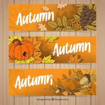 Colorful pack of hand drawn autumn banners