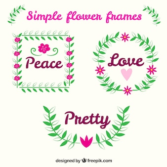 Colorful pack of lovely floral frames