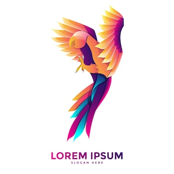 Colorful parrot logo template