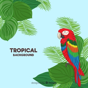 Colorful parrot with tropical leaves background