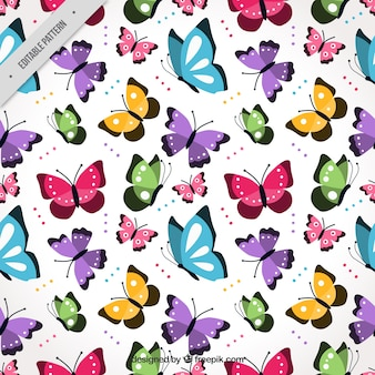 Colorful pattern with flat butterflies flying