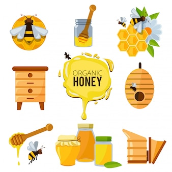 Colorful pictures of honey bumble and different others symbols of apiculture